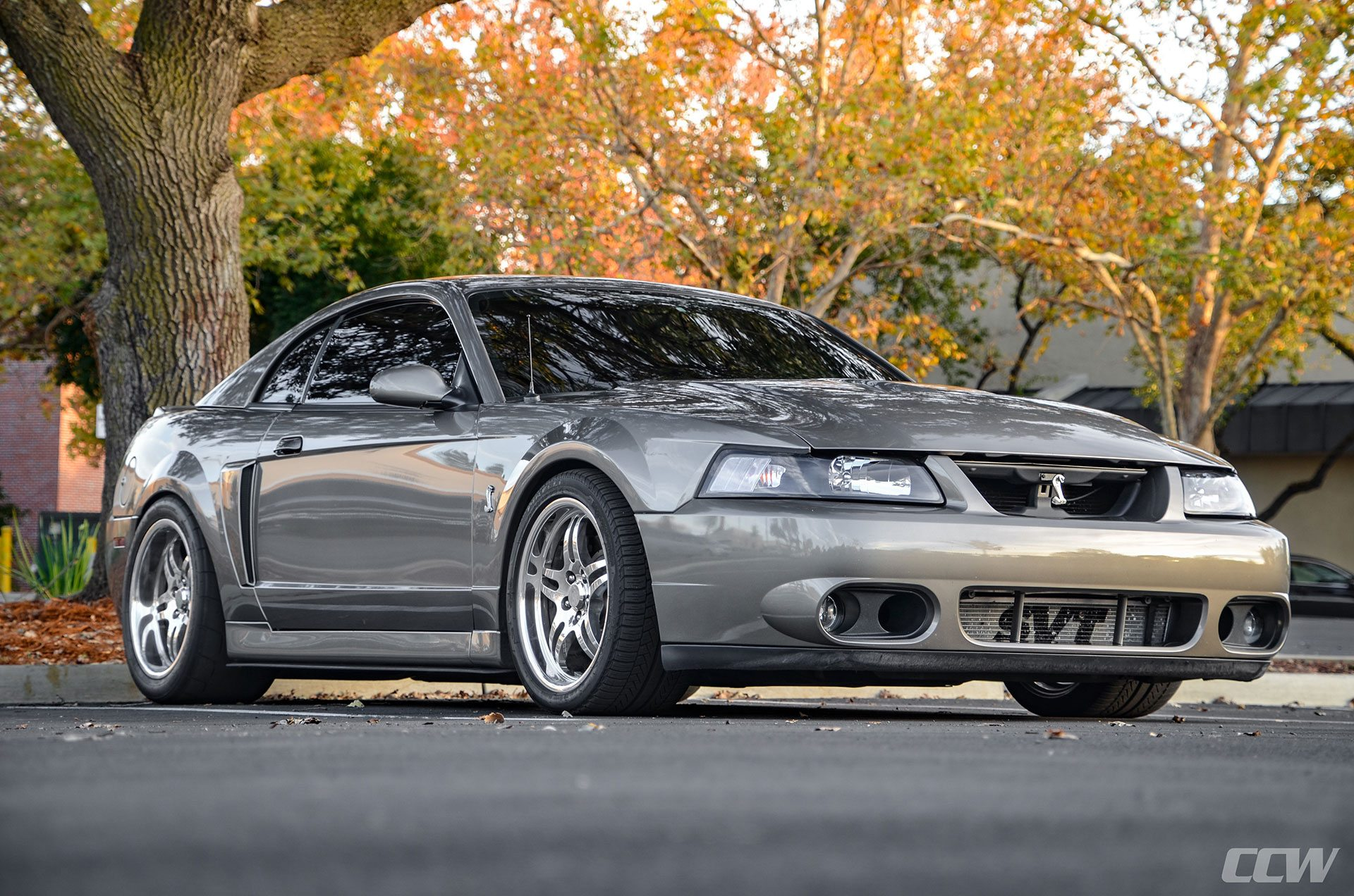 2003 ford mustang cobra terminator ccw sp505 forged wheels