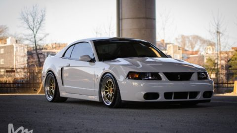 White Ford Mustang IV Gen - CCW D110 Forged Wheels - Gold