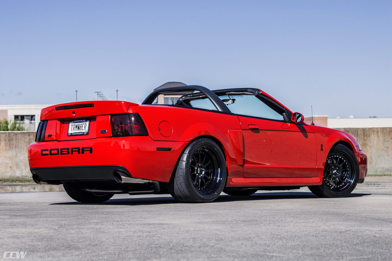 Ford Mustang Terminator 2001